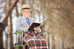 Starszy mężczyzna czyta książkę w parku Obrazy Royalty Free