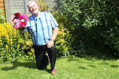Starszy mężczyzna na jeden kolanowy proponować Zdjęcia Royalty Free
