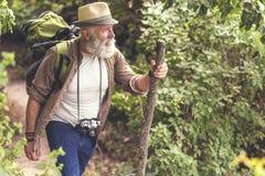 Starszy męski wycieczkowicza odprowadzenie z plecakiem w drewnie Obraz Stock