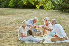 Starszy obywatele ma zabawę przy pinkinem Obrazy Stock