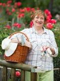 Starszy ogrodniczka kosz zdjęcia stock