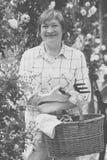 Starszy ogrodniczka kosz fotografia stock