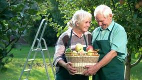 Starszy pary mienia jabłka kosz zdjęcie wideo