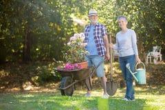 Starszy pary ogrodnictwo w ogródzie Fotografia Royalty Free