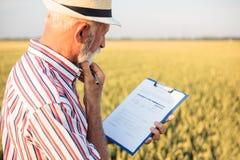 Starszy rolnik lub agronom podsadzkowi za kwestionariuszu podczas gdy sprawdzać wielkiego organicznie gospodarstwo rolne zdjęcia royalty free