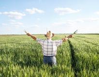 Starszy rolnik w polu zdjęcie stock