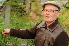 Starszych osob mężczyzna działanie w ogródzie Zdjęcie Stock