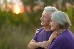 starszyzna szczęśliwych par Zdjęcia Royalty Free
