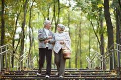 starszyzna szczęśliwych par Obraz Stock