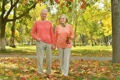 starszyzna szczęśliwych par Zdjęcia Stock