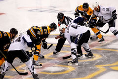 Start of the 2011 Eastern Conference Finals. The referee drops the puck between Chris Kelly (23) and Vincent Lecavalier (4) to start Game 1 of the Eastern Stock Image