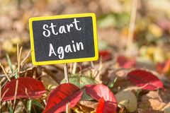 Start again sign. Start again wooden black sign in autumn leaves , motivation concept royalty free stock photography