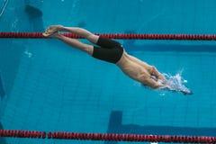 Start athlete swimmer on distance freestyle. Chelyabinsk, Russia - October 21, 2015: start athlete swimmer on distance freestyle during Championship of Stock Photo