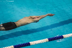 Start athlete swimmer in distance freestyle. swimming under water Royalty Free Stock Images