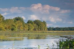 The start of  autumn. Early Fall at Eire Marsh Western Lake Erie Stock Photo
