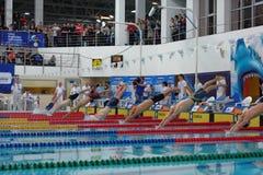 Start av individuell medleykonkurrens under den Salnikov koppen Arkivbild