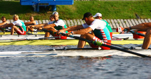 At the start of finals in rowing Stock Photography