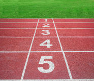 Start or finish position on running track with green field Stock Images
