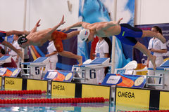 Start of freestyle swimming during Salnikov Cup Royalty Free Stock Image