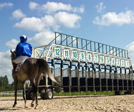 Start gates for horse races. Stock Photography