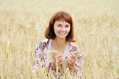 Start of harvesting. Start harvesting on the field Royalty Free Stock Photo