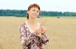 Start of harvesting. Start harvesting on the field Stock Photography
