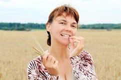 Start of harvesting. Start harvesting on the field Royalty Free Stock Image