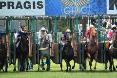 Start of horse race in Lysa nad Labem Royalty Free Stock Photography
