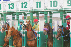 The start in the horse race. STOCKHOLM - JUNE 06: The start in the horse race at the Nationaldags Galoppen at Gardet. June 6, 2015 in Stockholm stock image