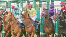 The start in the horse race. STOCKHOLM - JUNE 06: The start in the horse race at the Nationaldags Galoppen at Gardet. June 6, 2015 in Stockholm stock photography