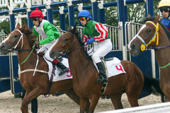 Start horse racing. Royalty Free Stock Images