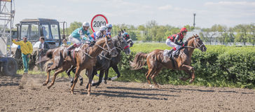 Start of horse racing at the racetrack Royalty Free Stock Photos