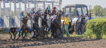 Start of horse racing at the racetrack Stock Photos