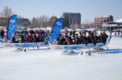 Start of an Ice Dragon Boat Race. OTTAWA - FEB 18: Ice dragon boat racing held in North America for the first time in Ottawa, Canada on February 18, 2017 on Dow` Stock Photography
