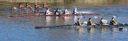 Start of Mens Crew Race Stock Images