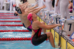 Start of mixed gender medley relay during Salnikov Cup Stock Image