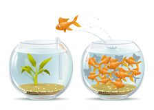 Start of a New Life. Illustration of fish jumping out of the crowded aquarium into a new life Stock Images