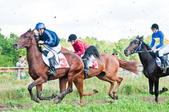 Start of racing horses starting a race Royalty Free Stock Photo