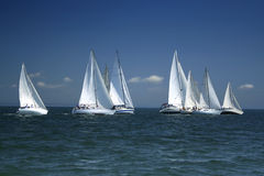 Start of a sailing regatta royalty free stock images