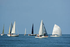 Start of a sailing regatta Royalty Free Stock Photos