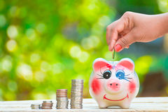 Start saving money Stock Photo