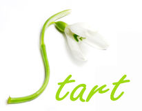 Start for Spring Stock Images