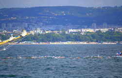 The start of swimming marathon,Varna Royalty Free Stock Image