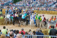 Start of the truffle fair in Alba (Cuneo), has been held for more than 50 years, the donkey race. Alba (Cuneo), Italy - october 5, 2014: With the start of the Stock Photography