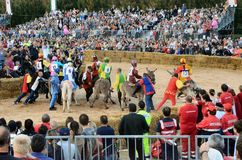 Start of the truffle fair in Alba (Cuneo), has been held for more than 50 years, the donkey race. Alba (Cuneo), Italy - october 5, 2014: With the start of the Royalty Free Stock Images