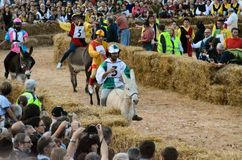 Start of the truffle fair in Alba (Cuneo), has been held for more than 50 years, the donkey race. Alba (Cuneo), Italy - october 5, 2014: With the start of the Stock Image