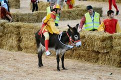 Start of the truffle fair in Alba (Cuneo), has been held for more than 50 years, the donkey race. Alba (Cuneo), Italy - october 5, 2014: With the start of the Royalty Free Stock Photo