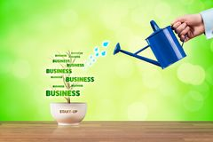 Start-up business growth Stock Photography