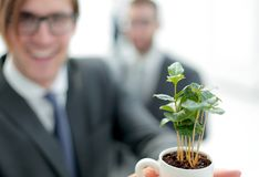 Start-up.young businessman shows young sprout. Photo with copy space stock photo