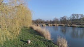 Start van lakeshore op een zonnige dag, dichtbij een klein visserijmeer in Sarisap, Hongarije stock footage
